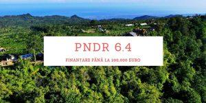 PNDR 6.4 MoradoConsulting.ro
